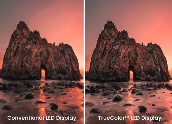 Feel The Virtual For Real With TrueColour™